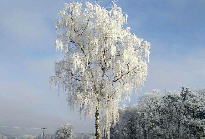 Snijeg možda padne, ali za koji dan nas prema najavama očekuju veliki minusi