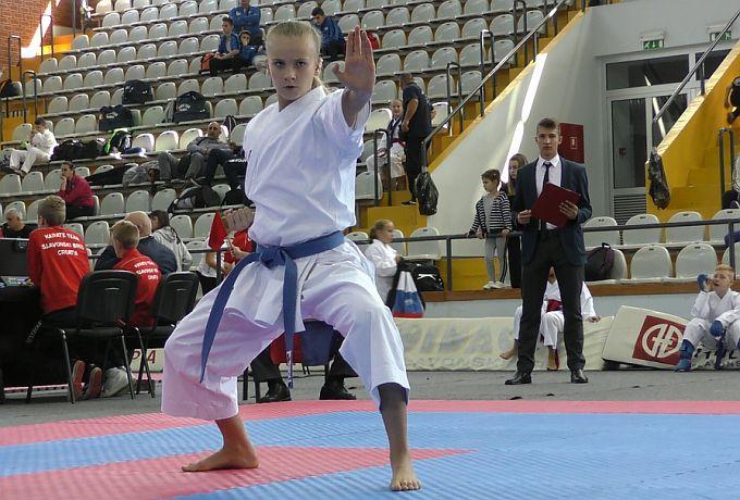 Preko 400 sudionika na 24. Memorijalnom karate kupu Slavonski Brod 2017.