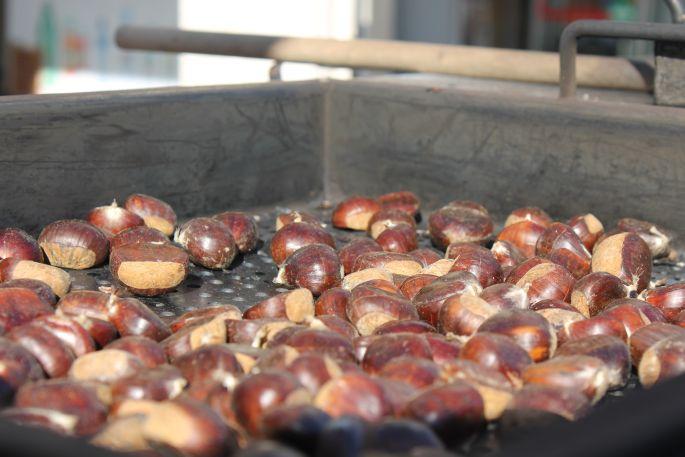Volite sakupljati plodove u šumama: Od 20. veljače za takav hobi treba vam dozvola Hrvatskih šuma