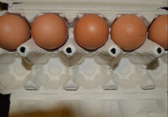Bacate je, a ne znate koliko vrijedi: Ljuska od jajeta je lijek za mnoge bolesti