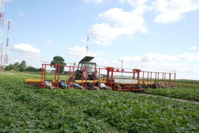 Ministarstvo poljoprivrede omogućit će poljoprivrednicima kreditiranje ulaganja po uvjetima povoljnijim nego na tržištu