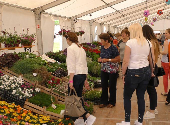 Brođani u prvom danu 11. Sajama cvijeća zadovoljni ponudom i cijenama, kažu niže su nego na tržnici