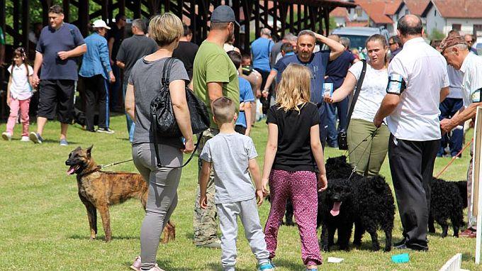 Danas u Slavonskom Brodu Nacionalna izložba pasa svih pasmina CAC HR