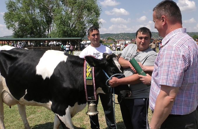 Nakon Gudovca, izložba stoke u Slavonskom Brodu najjača je u Hrvatskoj