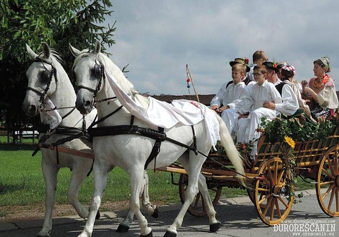 Među najljepšima, izabrana je najljepša svatovska zaprega Tomislava Perkovića iz Svilaja
