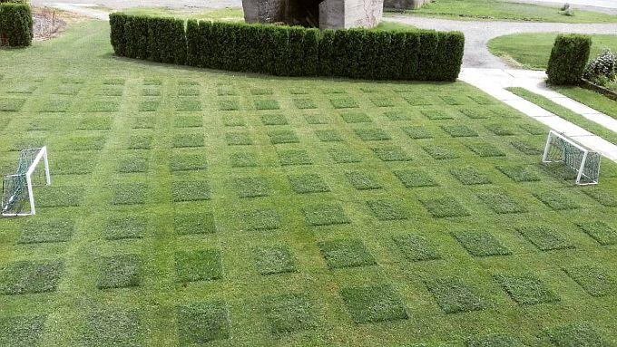 U Slavonskom Šamcu, u obiteljskom dvorištu, Dominik i njegov otac, u čast reprezentaciji uredili su i travnjak