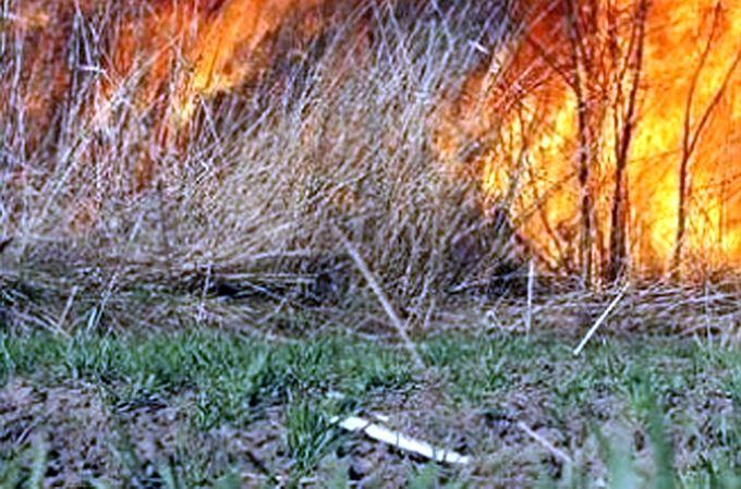 Počeli su požari na otvoreno prostoru, jučer vatrogasci gasili u Gornjoj Vrbi
