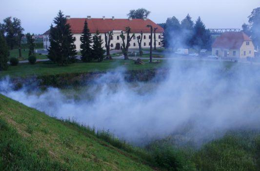 Popis lokacija u gradu na kojima će se sutra obaviti tretman zaprašivanja protiv komaraca