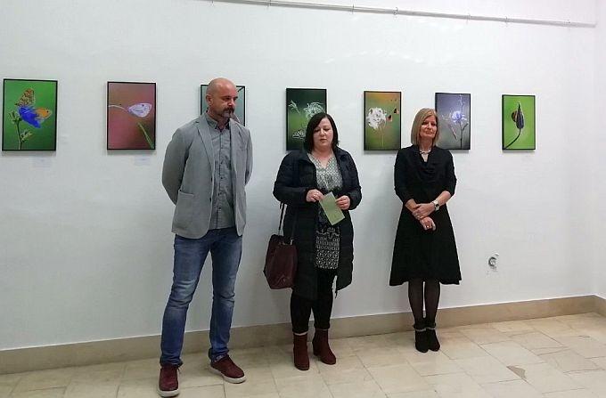 Otvorena izložba Sandre Stoić,  nagrađivane fotografkinje i članice fotokluba KadarSB