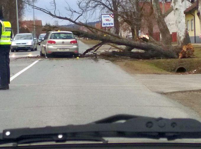 U Trnjanima je, kako saznajemo, vjetar srušio stablo na automobil, vozačicu su odvezli u bolnicu