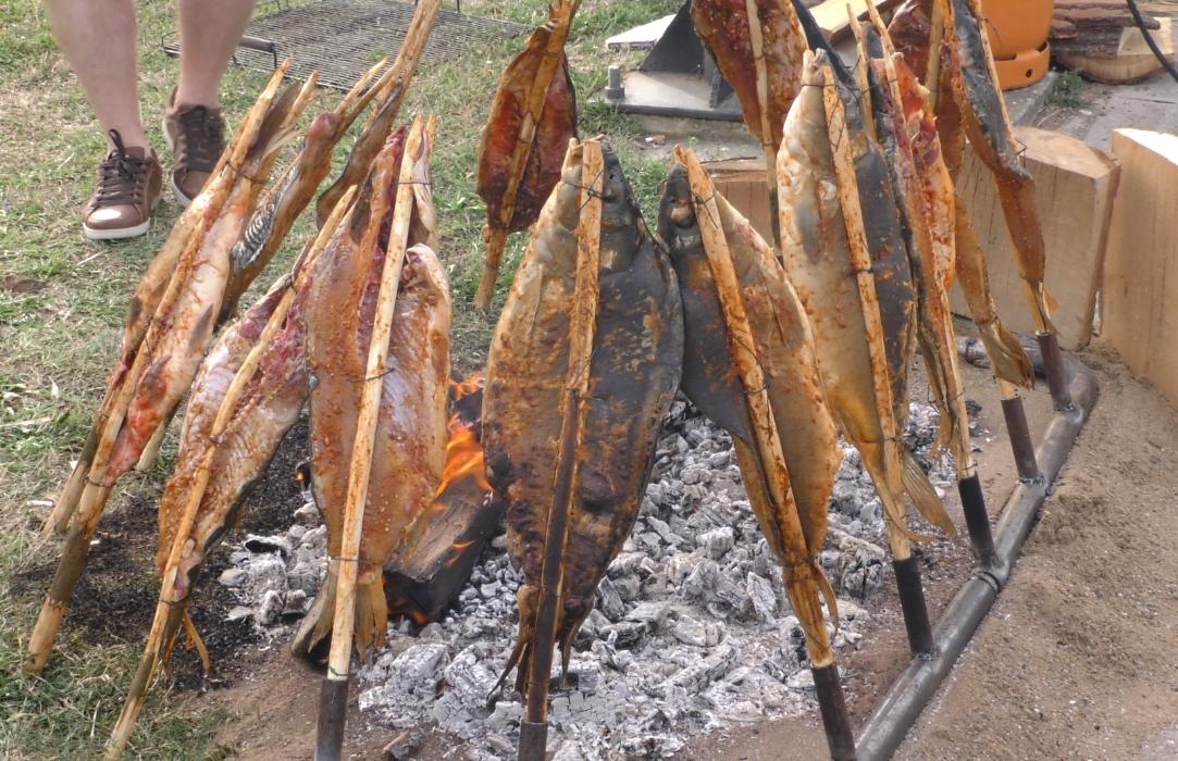 Gastro događaj i druženje za cijelu obitelj pripremaju u Oriovcu, vrhunski fiš, šaran na rašljama...