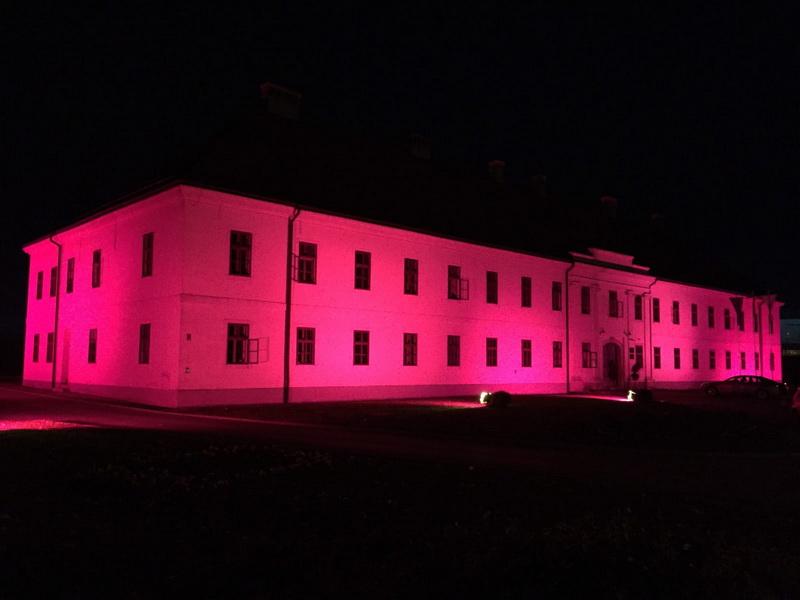 U večernjim satima zgrada Gradske uprave u brodskoj Tvrđavi s razlogom je osvijetljena ljubičastom bojom