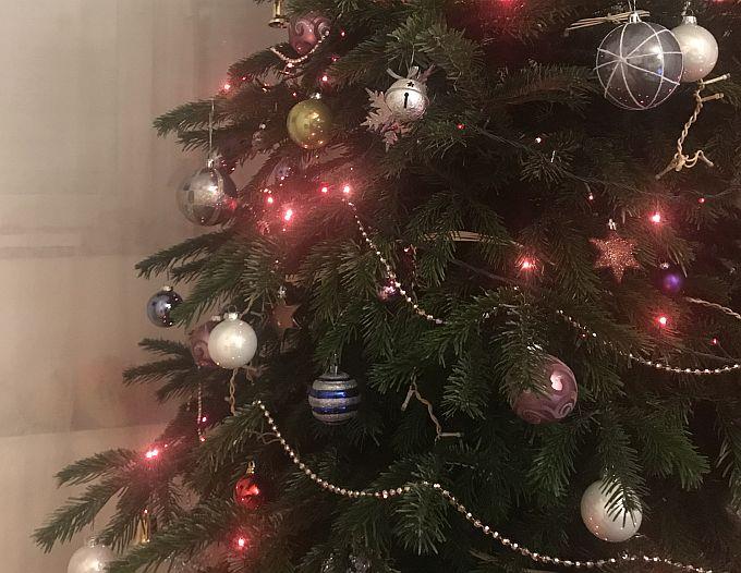 Okićena božićna drvca nekada su domove krasila sve do blagdana Svijećnice