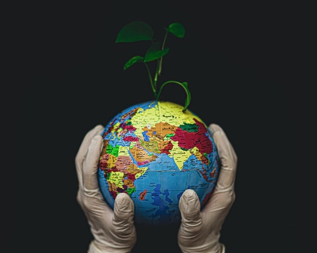 Danas obilježavamo Dan planeta Zemlje