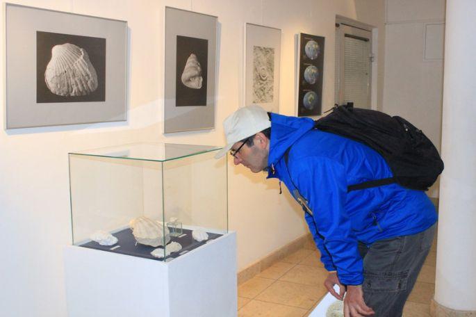 """Otvorena izložba """"Pljuskara – svjedok drevnog mora"""""""