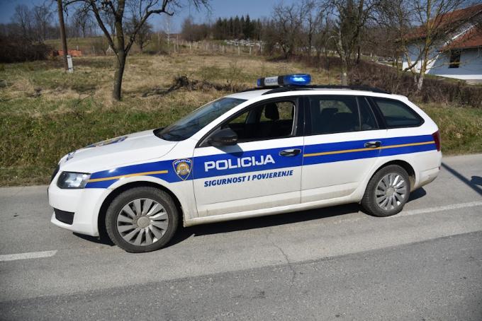 Pred automobil istrčala su tri psa i uginula na mjestu događaja