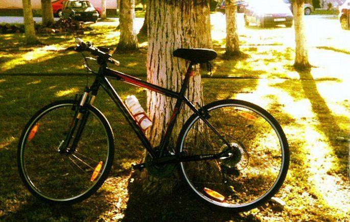 Mršavljenje i bicikliranje: Tri koraka koja će vam pomoći da otopite više kalorija