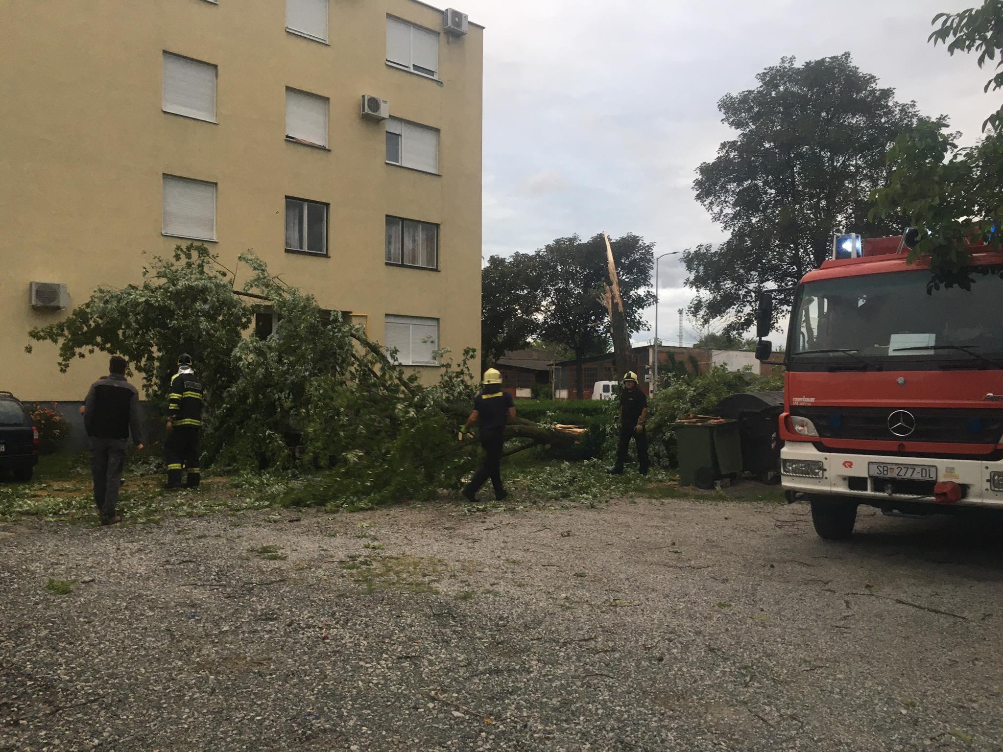 Olujno nevrijeme pogodilo je unutrašnjost Hrvatske, u Brodu stablo palo na automobil
